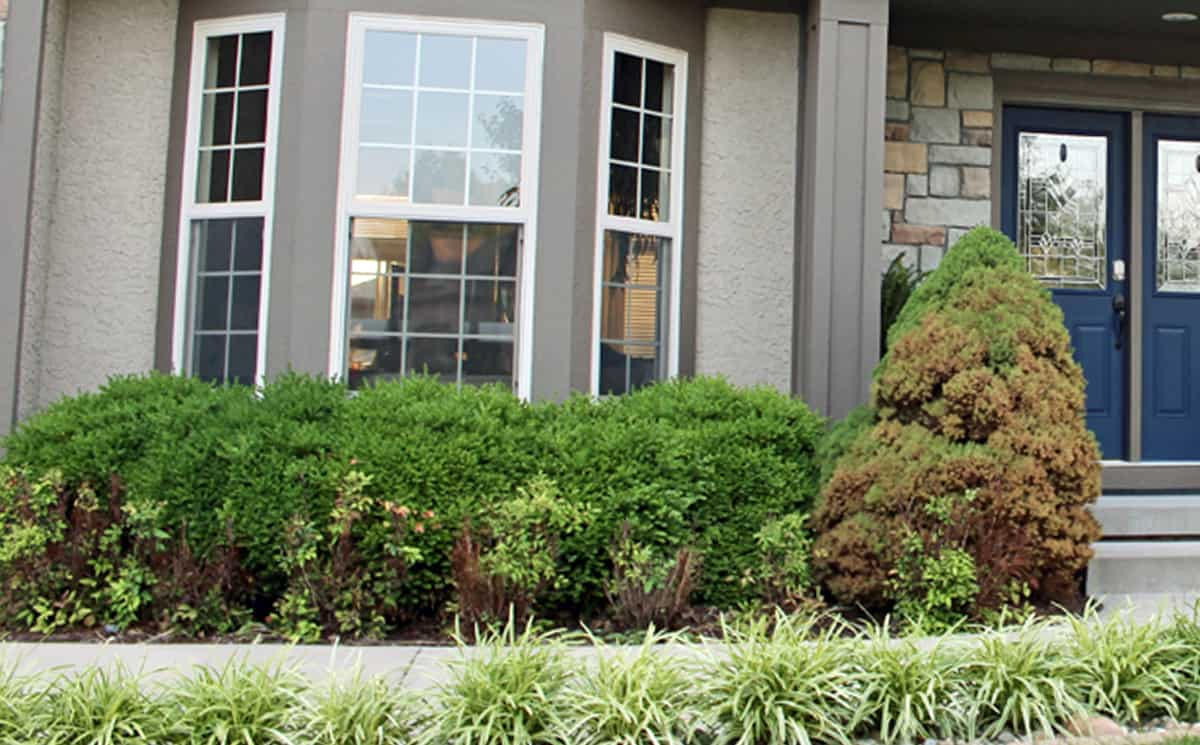 Ideas for front yard landscaping   A before and after