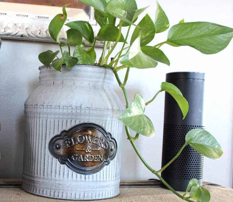 Rustic Plant holder gives a farmhouse decor look