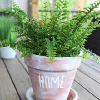 Simple tutorial to teach you how to stencil on a terra cotta pot. Super easy and super cute!