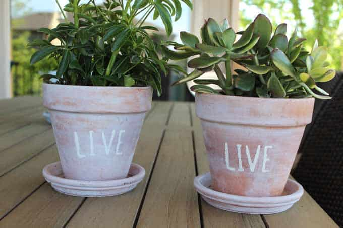 Plants in white washed terra cotta pots, stenciling your favorite word or saying with chalk paint.