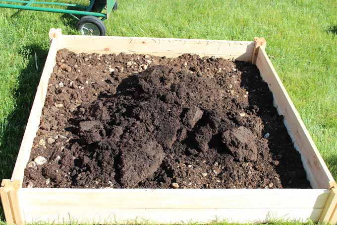 Garden soil for raised bed garden for tomatoes, cucumbers, sweet mint, cilantro. #raisedbedgarden #smallgarden