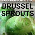 how to make oven roasted brussel sprouts close up image