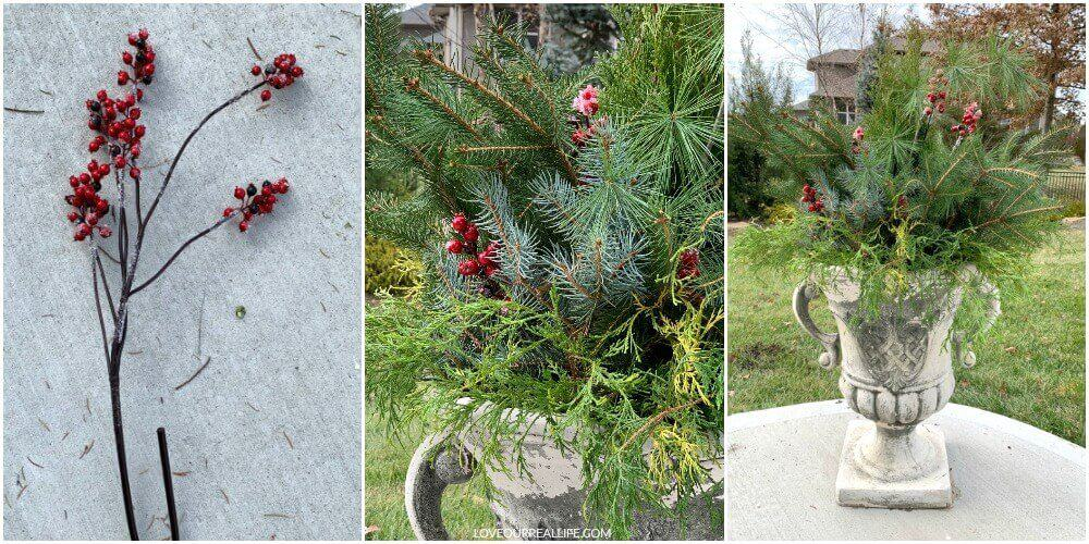 red berries in winter container plants for outdoor Christmas decorating