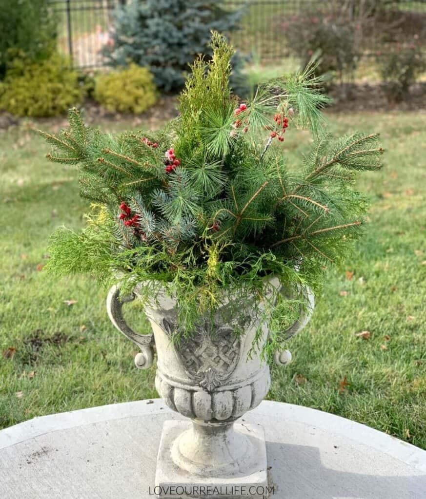 outdoor winter planter ideas