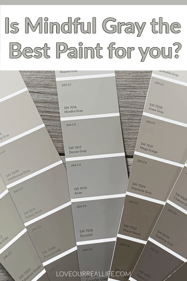 a number of different gray paint swatch strips