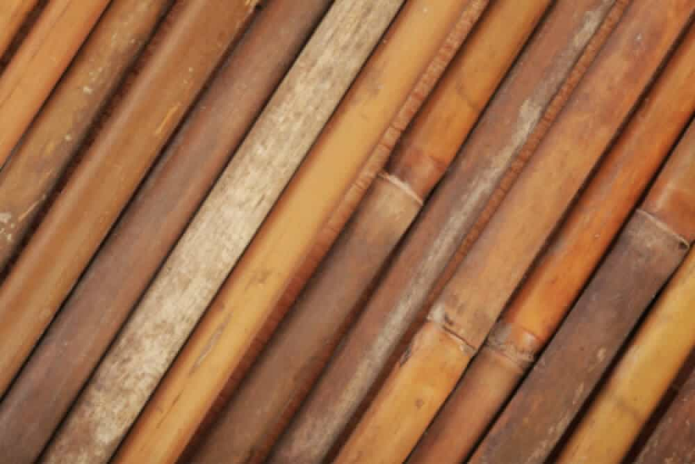 bamboo for basket weaving