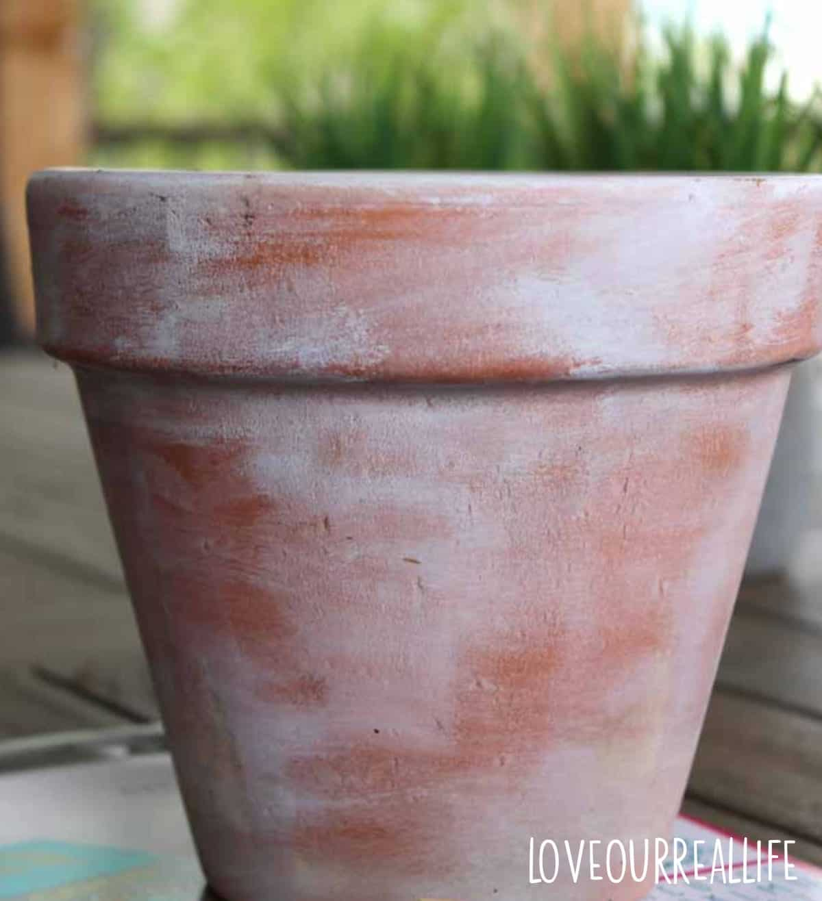 White paint used on clay pots for aged look.