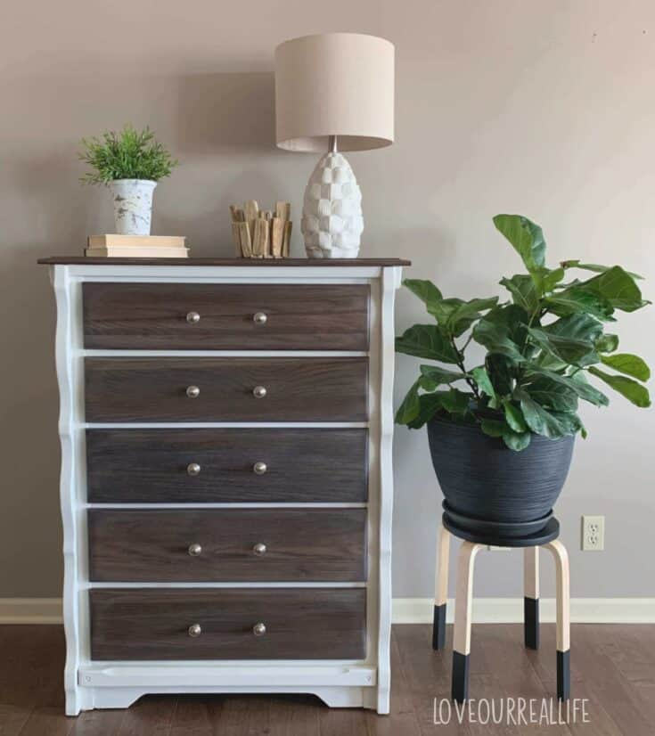 Dresser with body painted white and drawers stained with plant beside it.